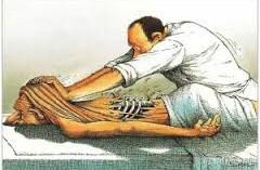 Masseurs-Kinésithérapeutes : du nouveau pour le Régime Invalidité Décès des affiliés à la CARPIMKO