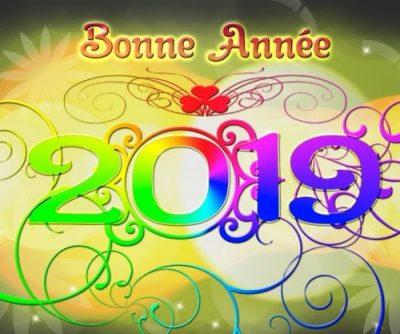 ……   Bonne année 2019 !